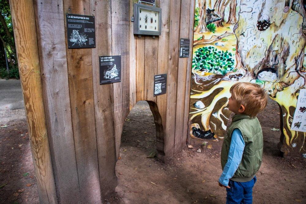 Cartello informativo sul bosco allo Zoo di Mulhouse, in Alsazia, Francia
