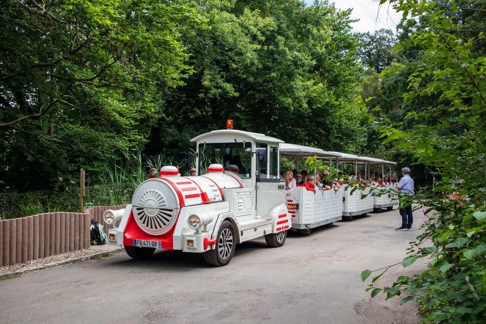 Il trenino elettrico dello Zoo di Mulhouse, in Alsazia