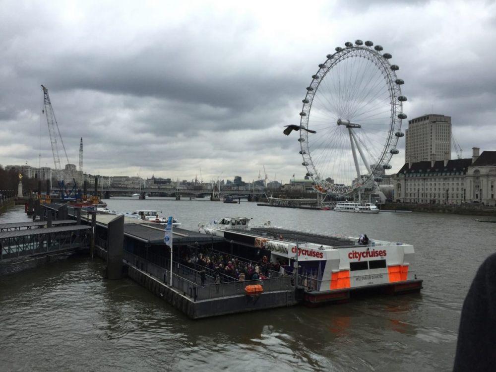 Vista sul Tamigi e sul London Eye