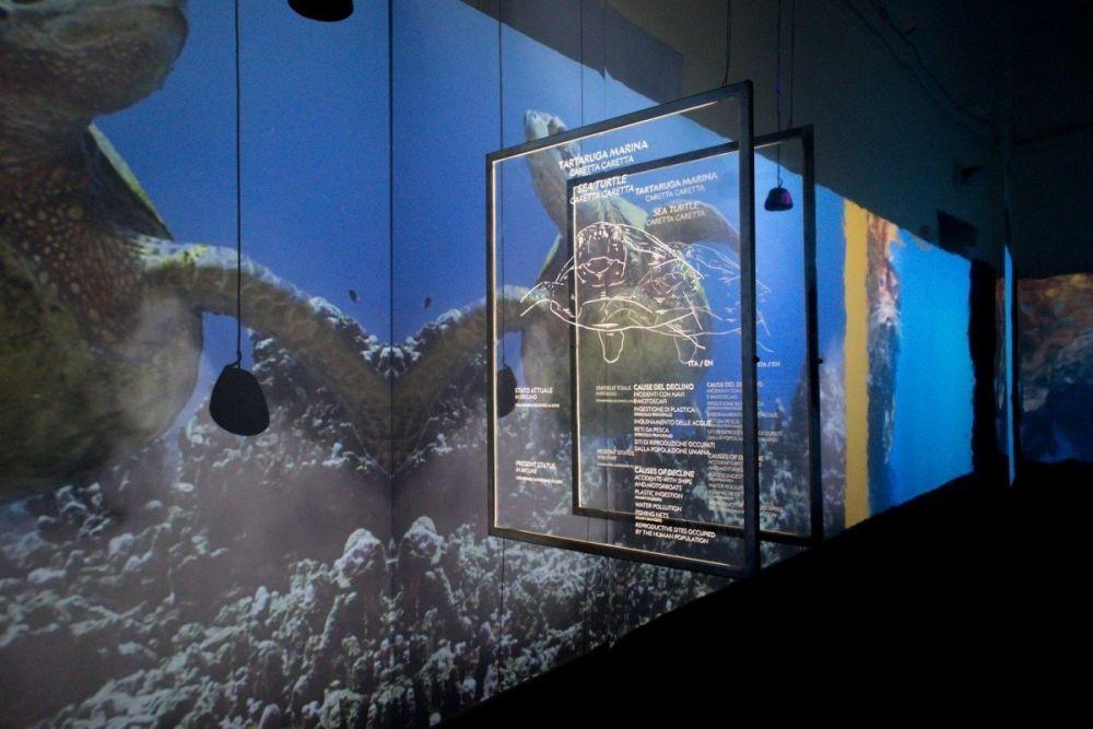 La prima sala della mostra Capire il cambiamento climatico – Experience exhibition di National Geographic con l'ambiente acquatico presentato dalla specie animale delle tartarughe marine