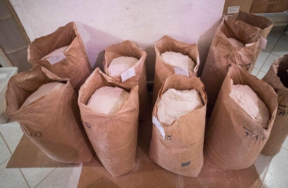 Farine integrali semintegrali macinate a pietra Dal gran al pan nel mulino dell'azienda agricola Pezzini di Sarnonico