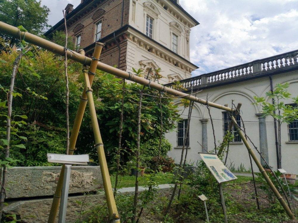 Il Giardino dell'Orto Botanico di Torino con il Castello del Valentino sullo sfondo