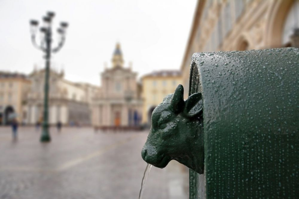 Un toret visto di profilo. I toret sono le tipiche fontane in ghisa di Torino con la testa di toro