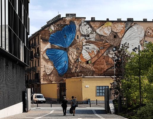 Murales Goal 13: Climate Action di Mantra a Torino per il progetto di arte urbana TOward 2030
